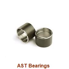 AST AST20 150100 plain bearings