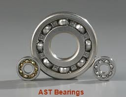 AST SCE2-1/2-4TN needle roller bearings