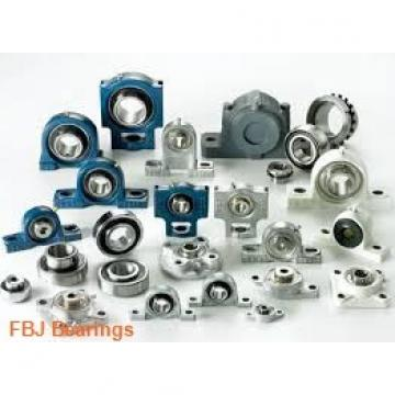 FBJ HK2520 needle roller bearings